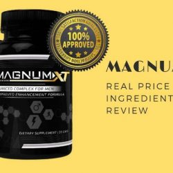 magnumxt-cover