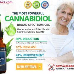 CBDFlow Essential Oil
